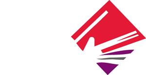 logo BFM blanc